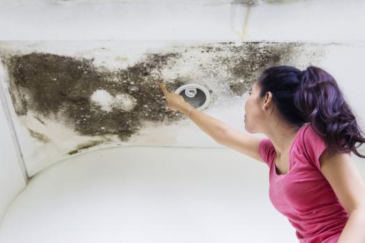 Comment réparer une fuite d'eau ou une infiltration dans une maison ?